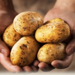 potatogold